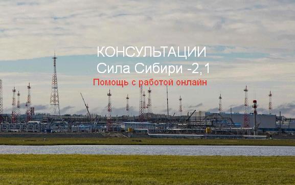 Помощь с работой вахтой Сила Сибири 2,1